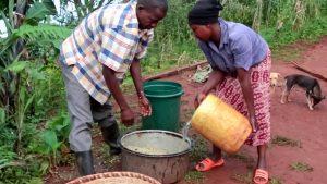Nach dem Fermentieren kann die angegärte Schleimschicht mit viel Wasser und Rubbeln von Hand abgewaschen werden.