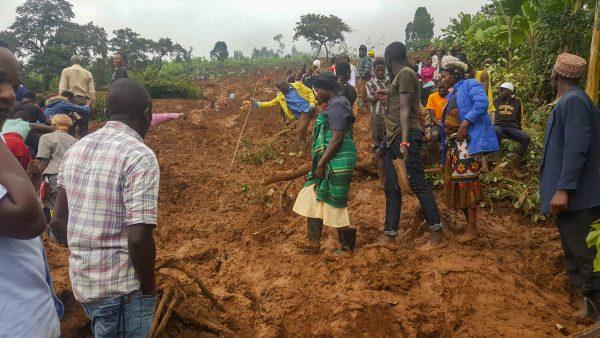 Bergrutsch im Manafwa-District im Dezember 2019: 40 Tote und 200 Farmer:innen haben allen Besitz verloren. Kaffeebäume vernichtet.