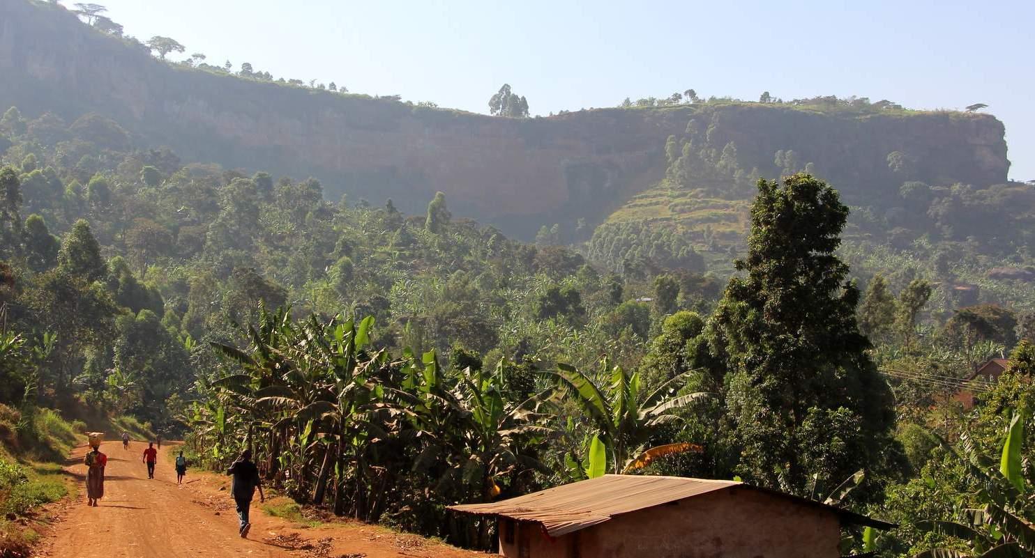RÖSTER  Reisereportage zu den Kaffee-Farmer:innen am Mount Elgon