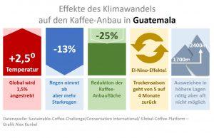 Kaffee und Klima in Guatemala