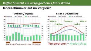 Typische Temperaturen im Kaffee-Anbau und Vergleich zu Deutschland