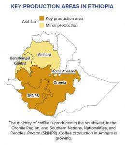 Kaffee-Regionen in Äthiopien