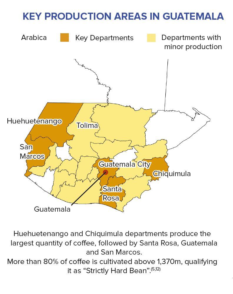 Kaffeeregionen in Guatemala